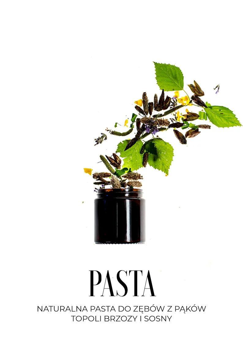 Naturalna pasta do zębów z pąków sosny topoli i brzozy z Trawiaste